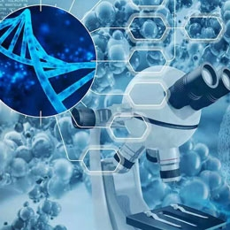 药物多肽(API)